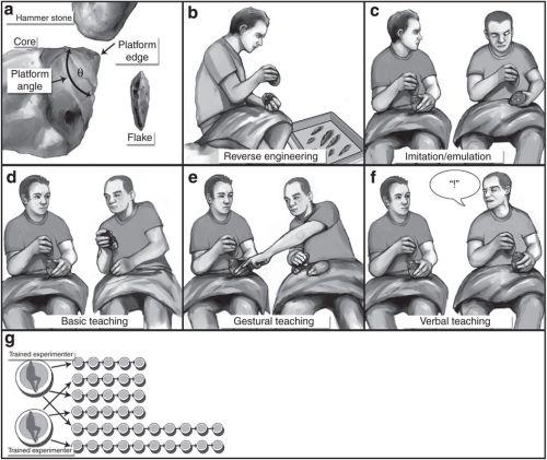 Σκιτσογράφηση της πειραματικής διαδικασίας