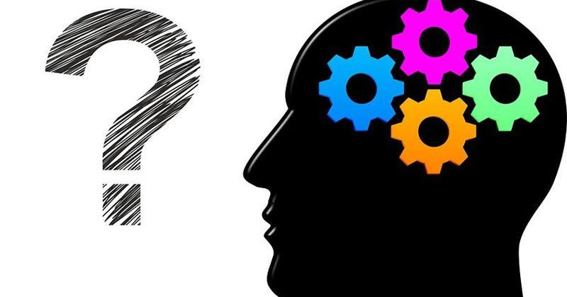 Εγκέφαλος: Ανακαλύφθηκαν δυο εγκεφαλικά κυκλώματα που επηρεάζουν τη λήψη αποφάσεων