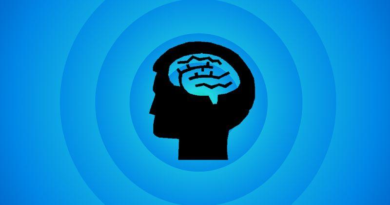 Εγκέφαλος – Πρόβλεψη: Νέο πλαίσιο εξήγησης του πώς ο εγκέφαλος κάνει σταδιακά αντιληπτικές προβλέψεις