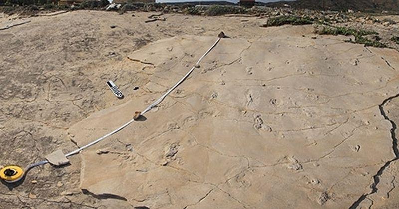 Άνθρωπος: Απολιθωμένες πατημασιές στην Κρήτη προκαλούν τις κυρίαρχες θεωρίες της ανθρώπινης εξέλιξης