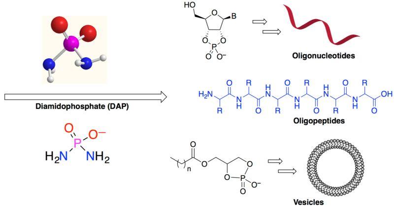 Χημεία της Ζωής: Επιστήμονες βρήκαν εν δυνάμει «ελλείποντα σύνδεσμο» στις χημικές διεργασίες που οδηγούν στην εμφάνιση της ζωής στη Γη