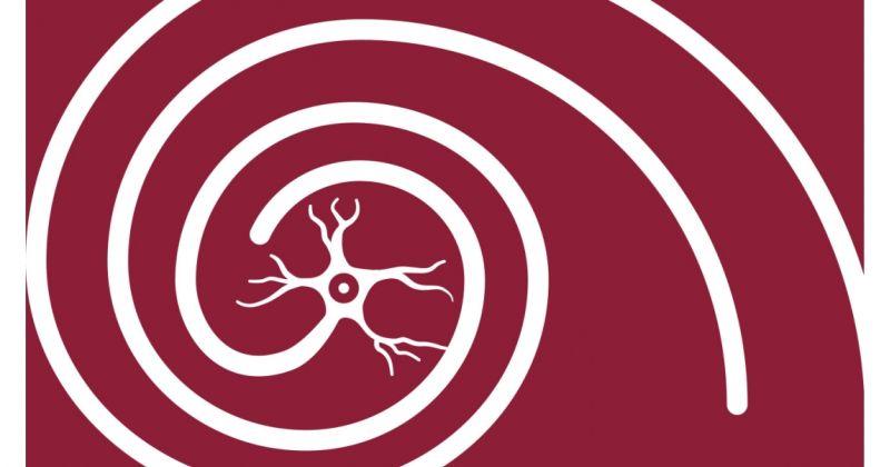 Νόσος του Alzheimer: Η πρωτεΐνη TAU σχηματίζει τοξικά σύμπλοκα με τις κυτταρικές μεμβράνες – Ελπίδες για νέες θεραπευτικές στρατηγικές