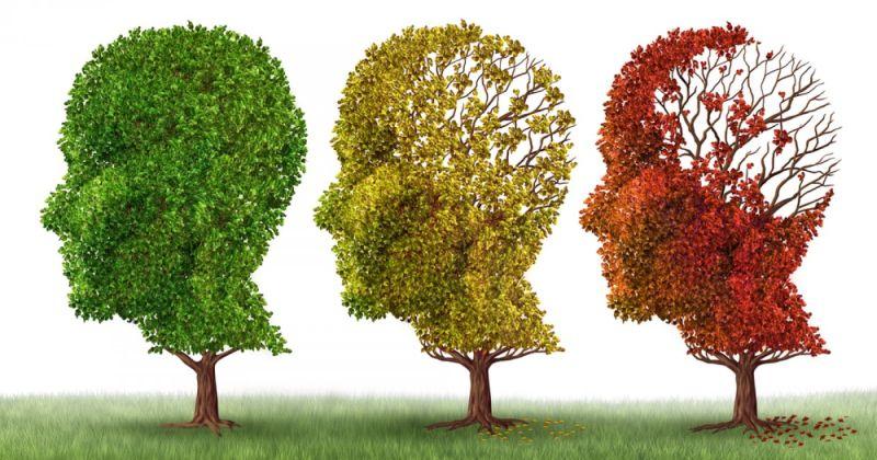 Μια καινούρια θεραπευτική στρατηγική: Υγιή μιτοχόνδρια θα μπορούσε να σταματήσουν τη νόσο του Alzheimer