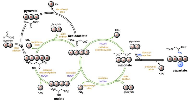 Χημικοί  έχουν ανακαλύψει μια ευλογοφανή συνταγή για την πρώιμη ζωή στη Γη