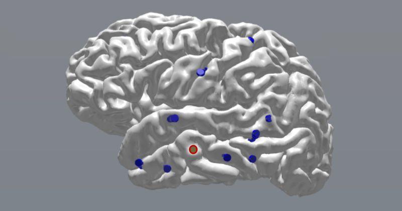 Ερευνητές αποδεικνύουν ότι η ακριβής χρονομετρημένη διέγερση του εγκεφάλου βελτιώνει τη μνήμη