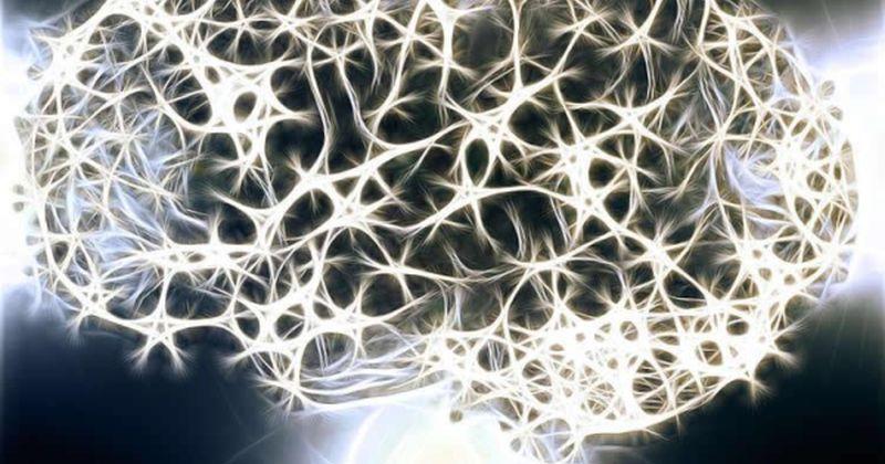 Το Ευρωπαϊκό Συμβούλιο Έρευνας χρηματοδοτεί έρευνα με αντικείμενο το πώς ο εγκέφαλος κάνει προβλέψεις