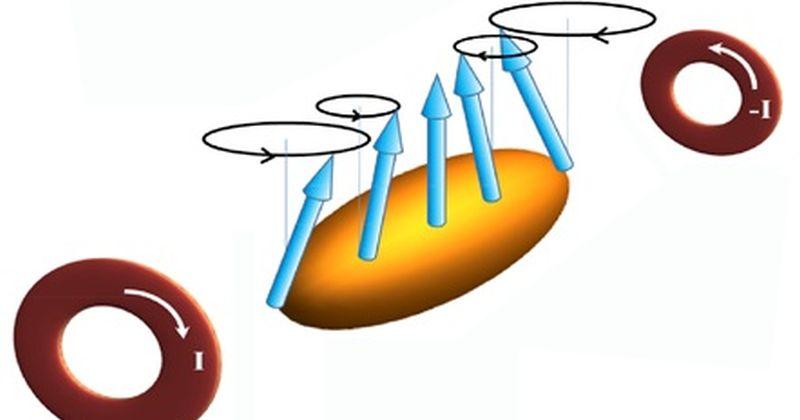 Συλλογική συμπεριφορά σπιν σε υπέρψυχρο κβαντικό αέριο συμπύκνωμα Bose-Einstein έχουν εντοπίσει ερευνητές