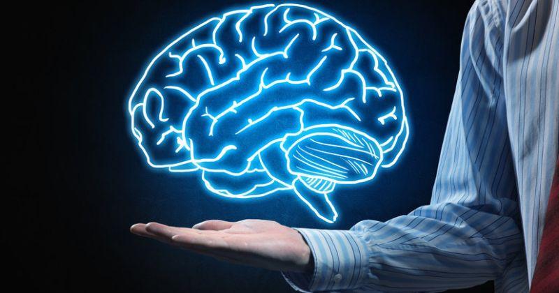Κάθε εγκέφαλος είναι μοναδικός και έχει το δικό του αποτύπωμα