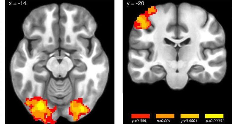 Έρευνα επιστημόνων αποκαλύπτει πώς ο χρόνος [αλλά και ο τρόπος] επηρεάζει τη μάθηση
