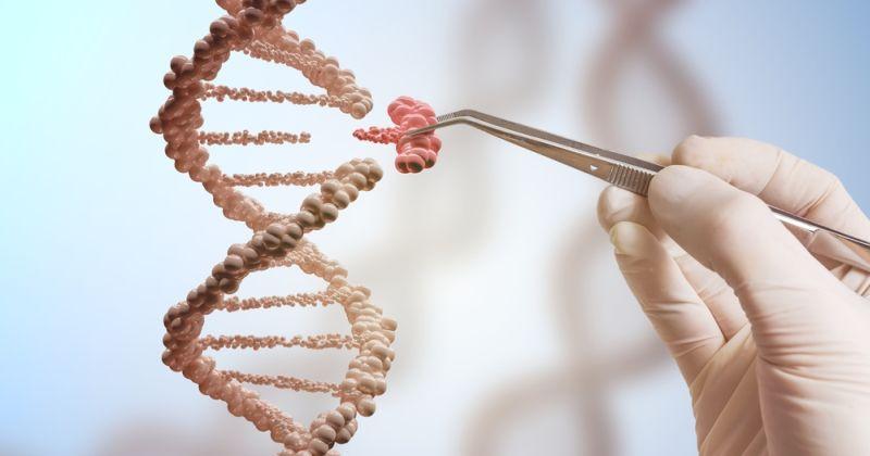 Επιστήμονες αποσιωπούν ξεχωριστά τμήματα ενός γονιδίου χρησιμοποιώντας την CRISPR-SKIP