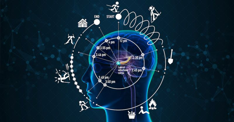 Πώς ο εγκέφαλός μας βιώνει το χρόνο ανακάλυψαν ερευνητές σε νευρωνικό του δίκτυο