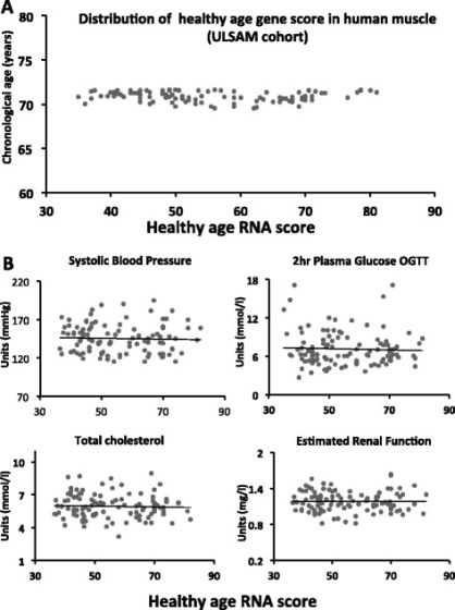 20150907_Distribution of healthy ageing gene score560