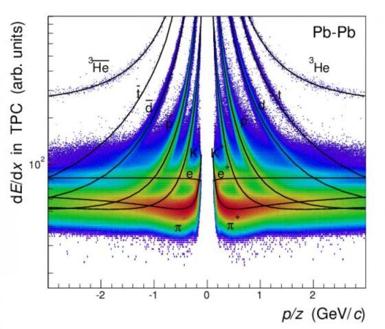 Μετρήσεις της απώλειας ενέργειας στον θάλαμο χρονικής προβολής επιτρέπει στο πείραμα ALICE να προσδιορίσει αντιπυρήνες (επάνω καμπύλες στα αριστερά) και πυρήνες (επάνω καμπύλες στα δεξιά) που παράγονται από τις συγκρούσεις ιόντων μολύβδου στο LHC (Εικόνα από: ALICE)
