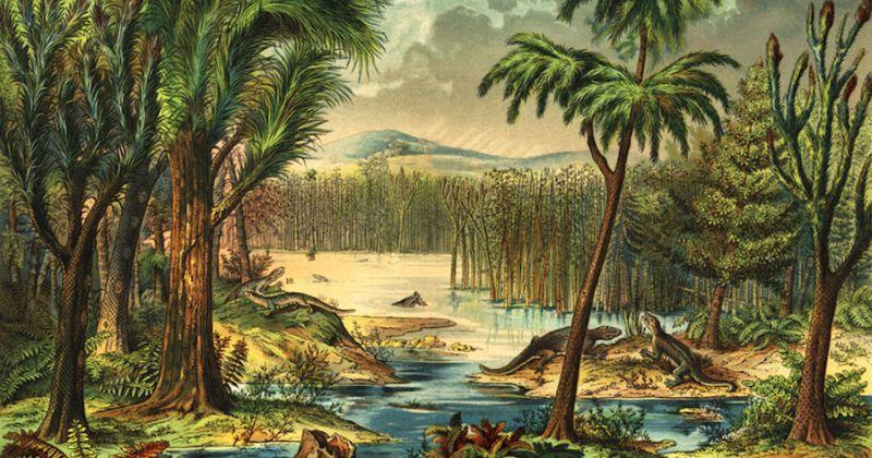 Νέα στοιχεία επιστημόνων δείχνουν πώς η κατάρρευση του τροπικού δάσους 307 εκατομμύρια χρόνια πριν επέδρασε στην ανάπτυξη των σπονδυλωτών ξηράς