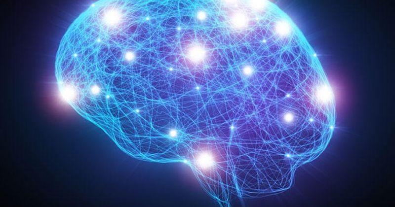 Επιστήμονες ξεκλειδώνουν το μυστικό του πώς ο εγκέφαλος κωδικοποιεί τον λόγο