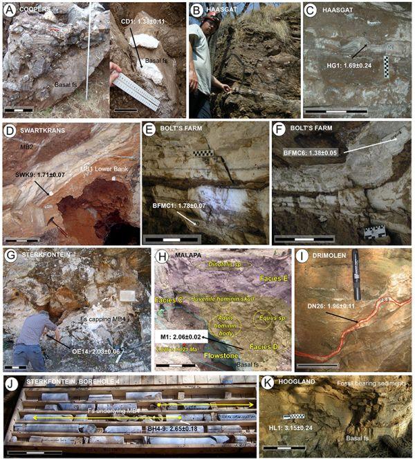 Σχετική Dating από απολιθώματα φύλλων εργασίας