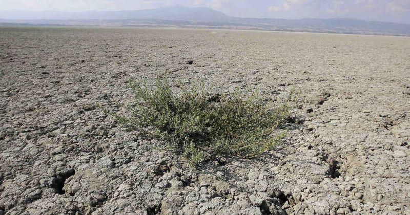 Έρευνα του ΟΗΕ αποκαλύπτει ότι κινδυνεύει με «ερημοποίηση» το ένα τρίτο των εδαφών της Ελλάδας