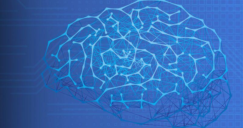 Δικτύωση και νοημοσύνη: Τα εγκεφαλικά δίκτυα πιο σταθερά σε άτομα με υψηλότερες γνωστικές ικανότητες
