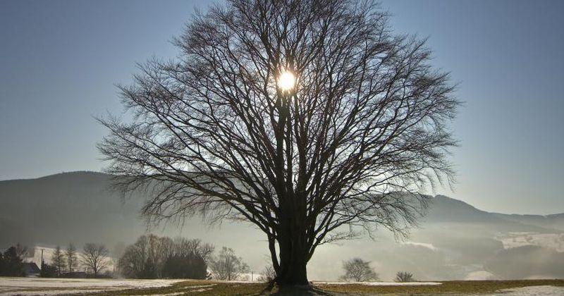Ο Ήλιος στο χειμερινό ηλιοστάσιο τη Δευτέρα 21 Δεκεμβρίου – και μια συμβουλή του Ησίοδου στον αδελφό του