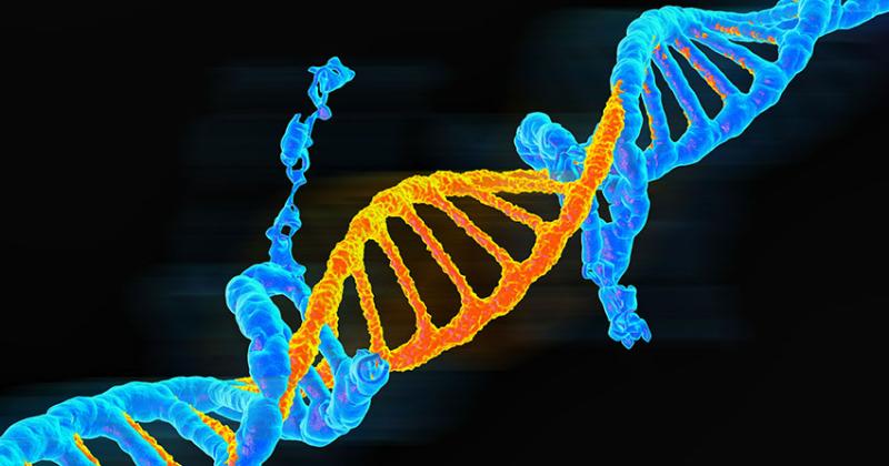 Υπολογιστική ανάλυση αποκαλύπτει πηγές γενετικών παραλλαγών (μεταλλάξεων)